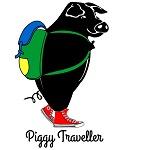 Piggy Traveller